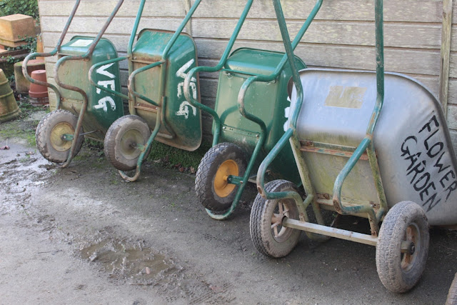 Wheelbarrows lined up ready for action at Heligan