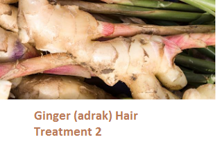 Ginger (adrak) Hair Treatment 2