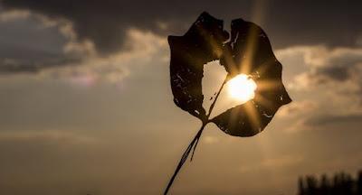 15 действия които ни отнемат емоционална и физическа енергия