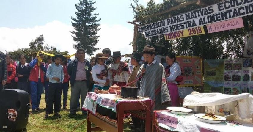 UGEL Abancay y la Red Ampay-Huanipaca organizó el «Tinkuy 2018»