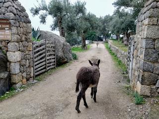 lugares bonitos en Mallorca