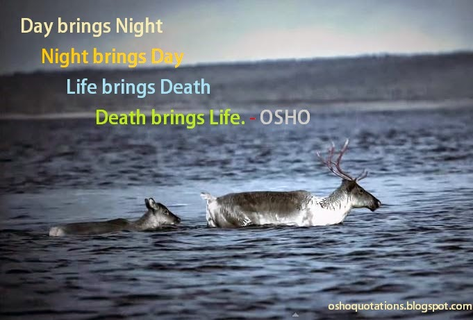 Osho Quotations