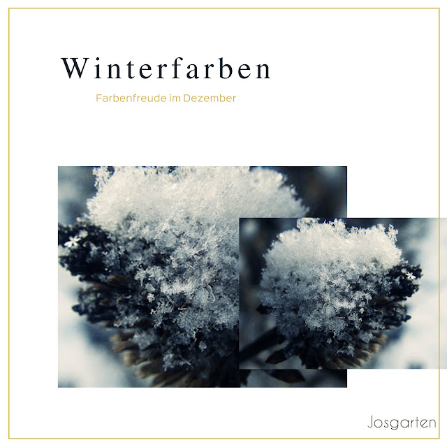 Jos Garten/Winter/Eis und Schnee