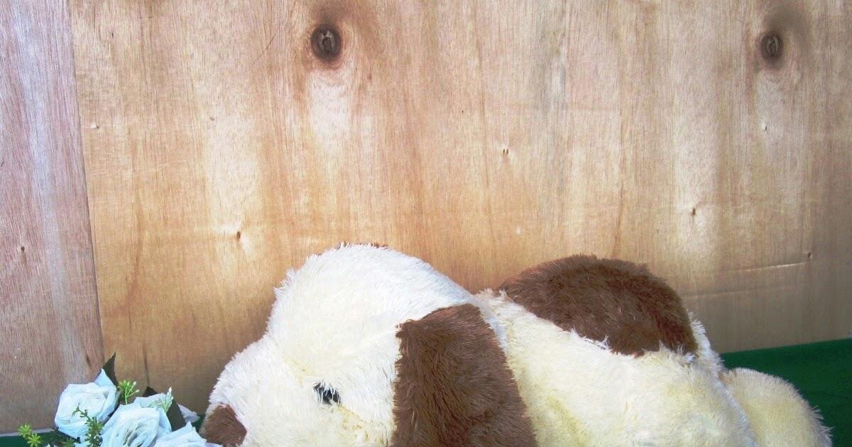 Toko Boneka Lucu Online Jual Harga Murah Panda Beruang