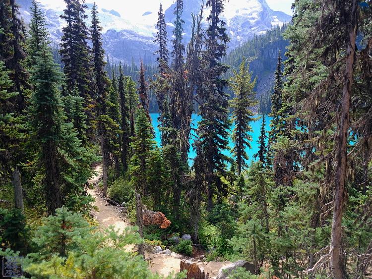 Le Chameau Bleu - Blog Voyage Colombie Britannique Canada - Randonnée Joffre Lake - Colombie britannique - Canada