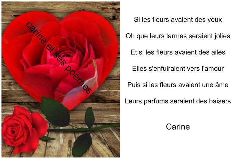 Carine Et Ses Poèmes Damour Avec Photos Mot Damour