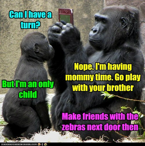 Funny And Wild Animals : Funny Animals Mother's Day