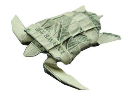 Image result for money turtle