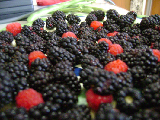 The difference between Blackberries and Black/Red Raspberries