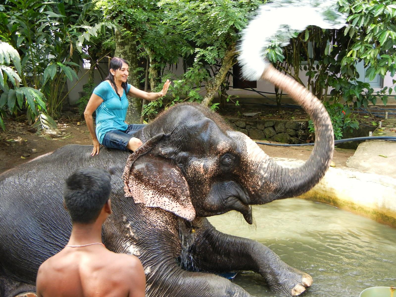 SalMer: Kerala - Thekkady, Kumarkom, Kovalam
