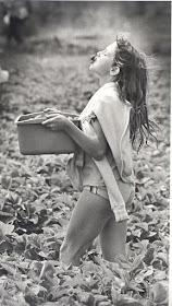 White girl picking strawberries in Richmond, 1985
