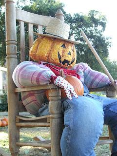 Pumpkin man: LadyD Books