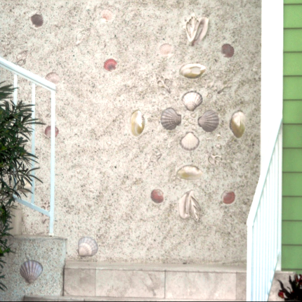 beach shell wall