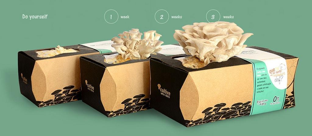 Inspirasi Desain Kemasan Packaging - Cultive Uma Ideia