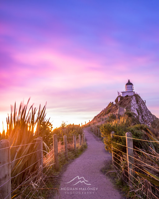 nugget point lighthouse pastel dawn