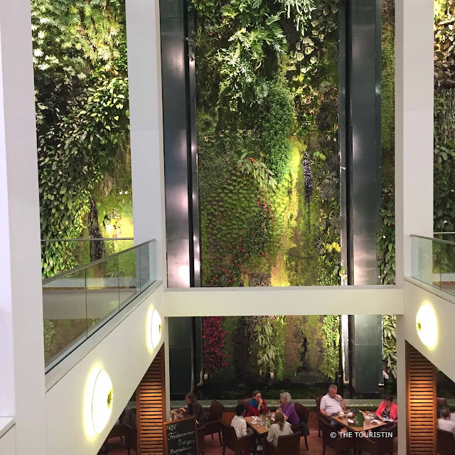 People sitting in a cafe next to a massive and lush hanging garden.