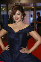 Payal Ghosh aka Harika in Dark Blue Deep Neck Sleeveless Gown at 64th Jio Filmfare Awards South 2017 ~  Exclusive 092.JPG