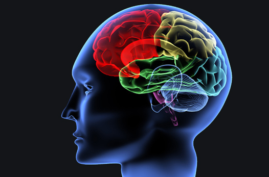 Image Result For Head Injury Lawyer