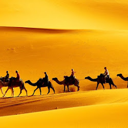 Отдых в Тунисе: достопримечательности и туристическое особенности