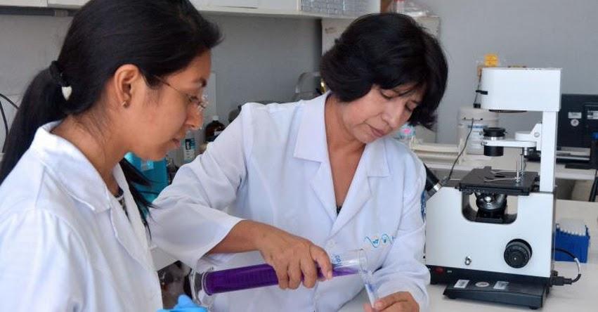 UNMSM: Universidad San Marcos tendrá el único laboratorio de clonación de alpaca en el mundo - www.unmsm.edu.pe