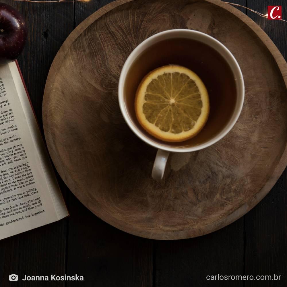 ambiente de leitura carlos romero frutuoso chaves coceira hipocondria mania pesquisa google
