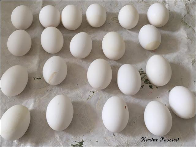 convite quebra ovo