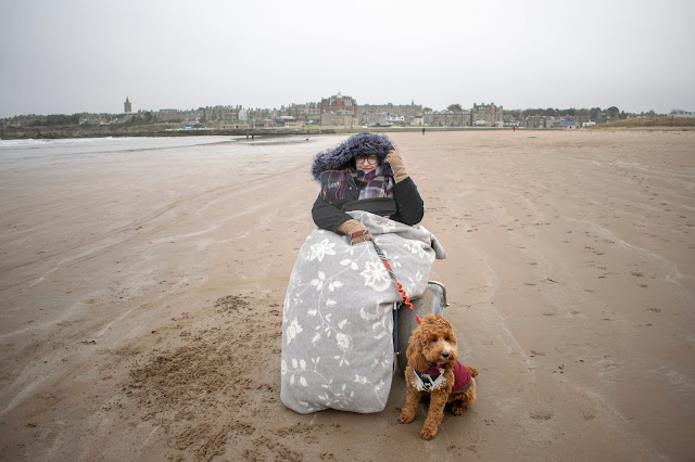 Woman in beach wheelchair covered in grey blanket holding lead of red and white cockapoo puppy