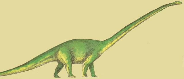 Mamenchisaurus y dinosaurios