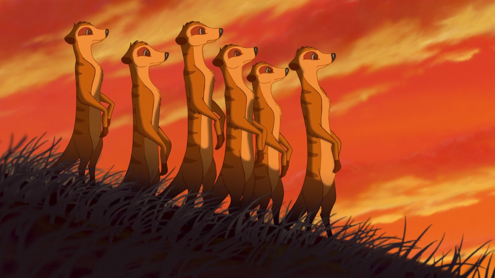 Erin S Blog Meerkats From Quot The Lion King Quot And Quot The Lion