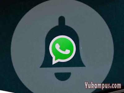 cara mengatasi notifikasi whatsapp tidak bunyi