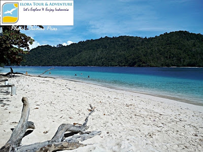 Serunya Wisata Pulau di Pulau Kelapa Teluk Kiluan eloratour