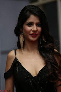 Kashish Vohra at Rogue Movie Audio Launch ~  (45).JPG
