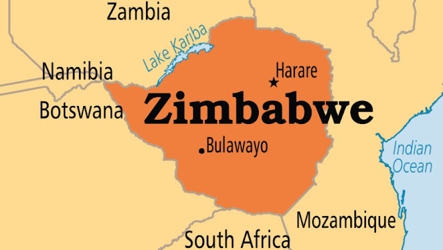 Chama cha Upinzani Nchini Zimbabwe Chamfukuza Naibu Wake