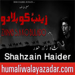 http://www.humaliwalayazadar.com/2017/10/shahzain-haider-nohay-2018.html