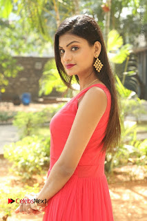 Telugu Actress Anusha Stills at Dhyavudaa Movie Teaser Launch  0013.JPG