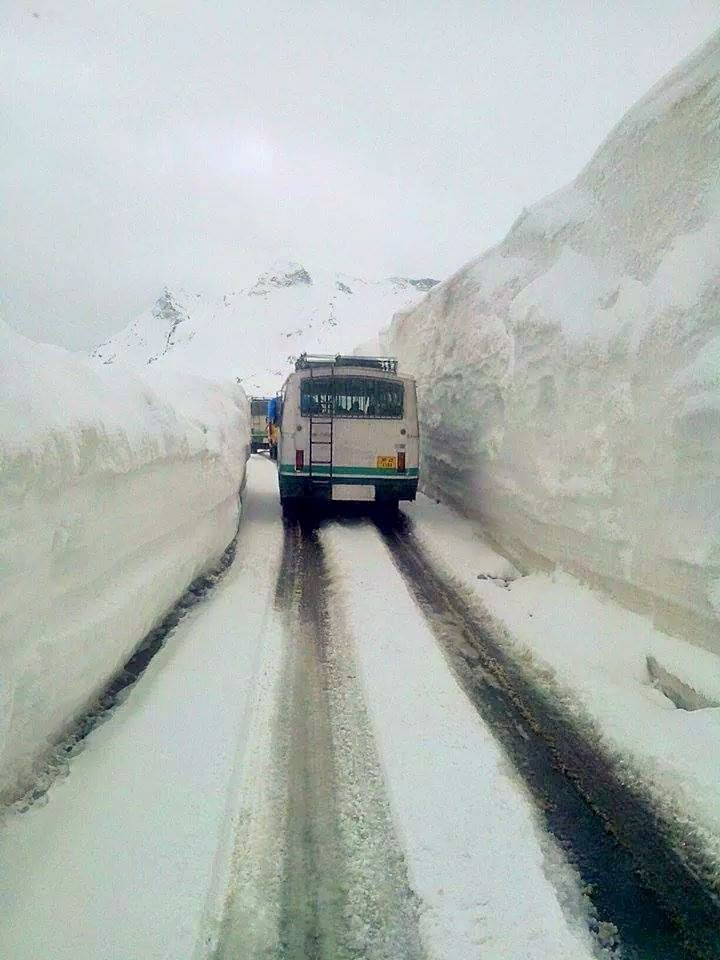 Himachal Travel India Bus
