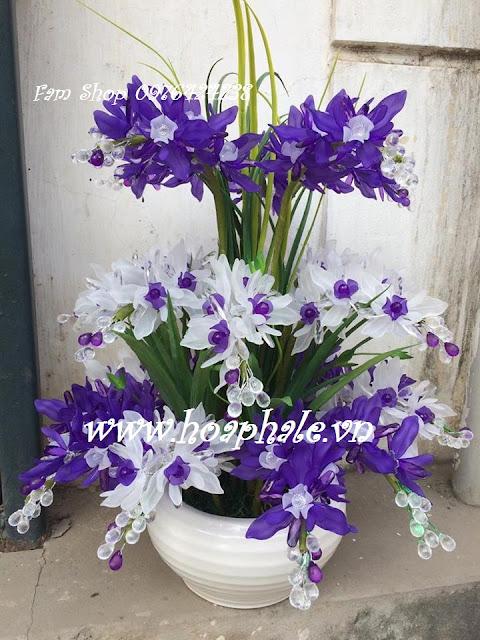 Hoa da pha le tai Thanh Cong