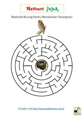 Mencari Jejak: Bantulah Burung Hantu Menemukan Sarangnya