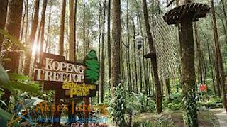 PT. Kopeng Treetop Adventure Park Semarang
