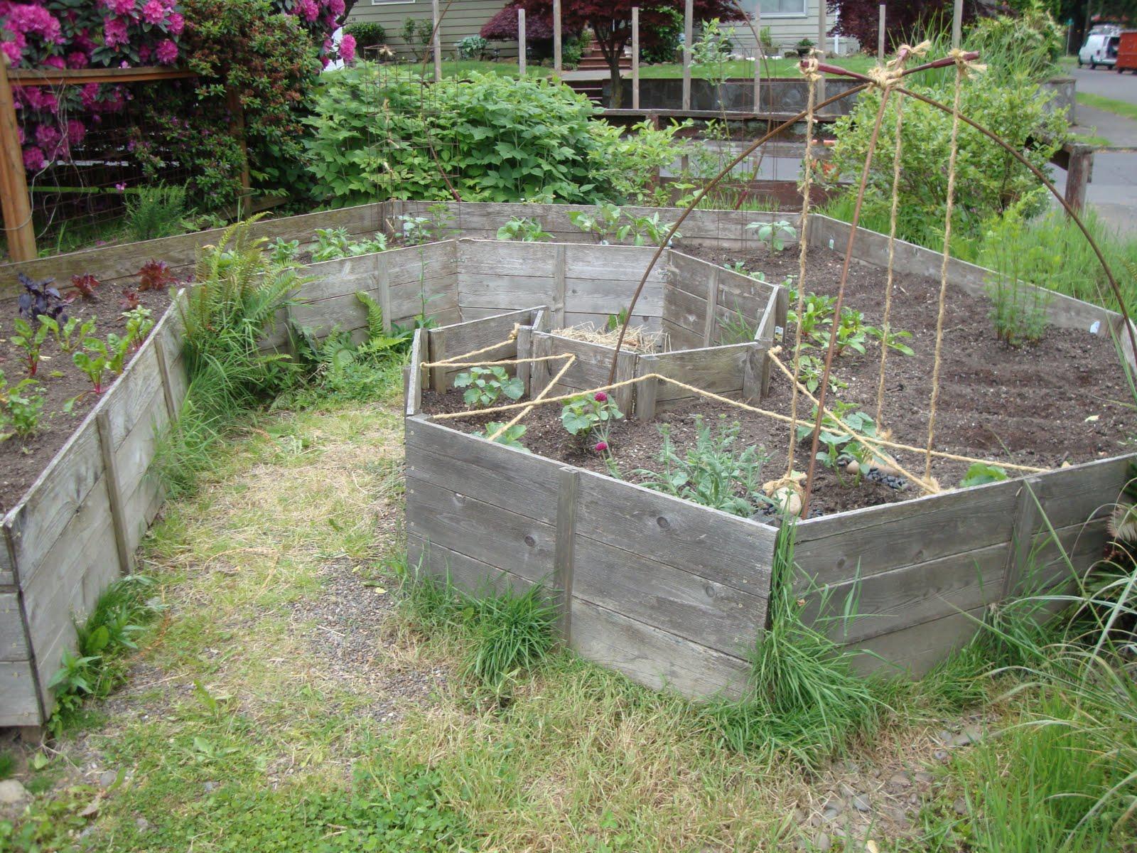 danger garden: Creative vegetable gardening