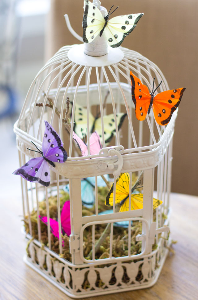Decorate a bird cage with feather butterflies!