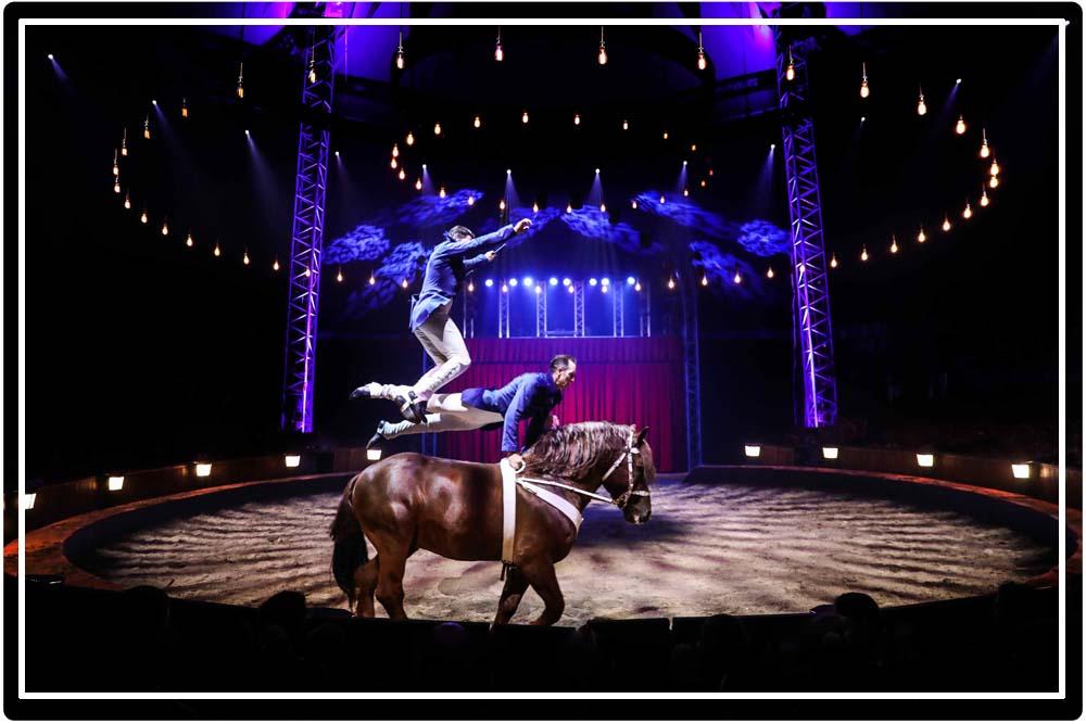 L'histoire  du cirque équestre en spectacle avec Alexis Gruss