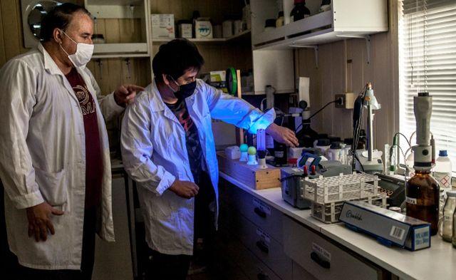 Dr. Roberto Quevedo e investigador Teófilo Espinoza