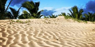 7 Rekomendasi Tempat Wisata di Merauke, Surga di Timur Indonesia 7
