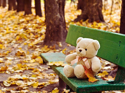 lovely-teddy-sitting-on-bench-collections