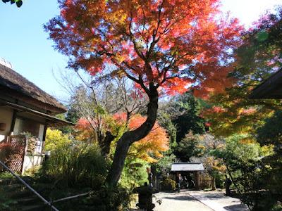 浄智寺の紅葉