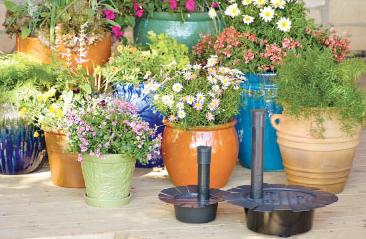 Urdu Gardening Tips Indoor Plants In Pakistan Garden ...