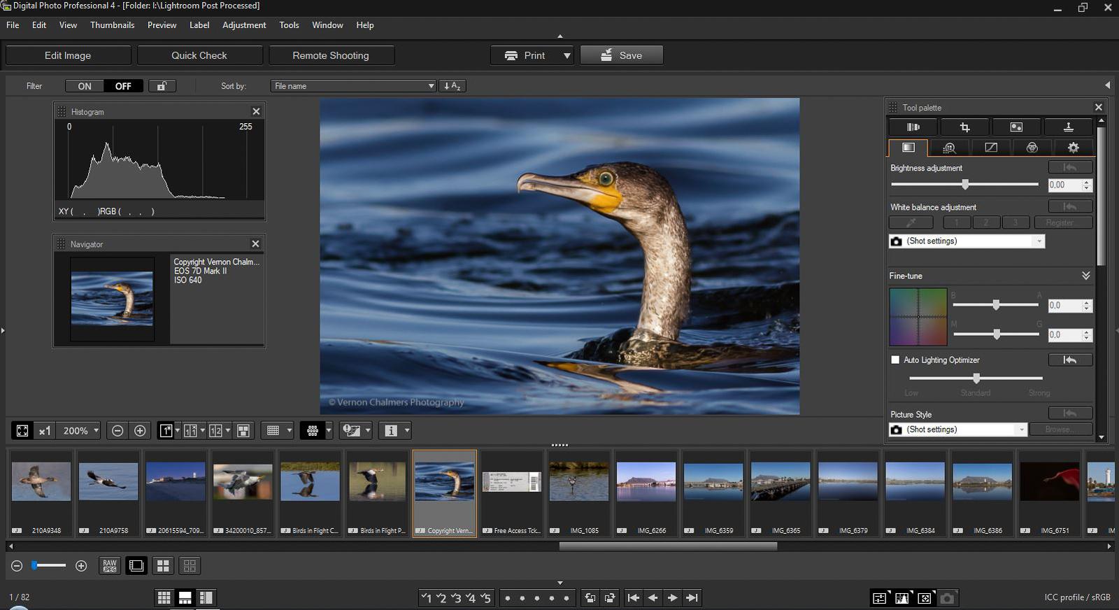 Canon dpp download windows 10 | Canon Digital Photo