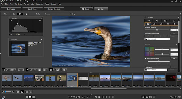 Canon Digital Photo Professional 4.9.20 For Windows / Mac