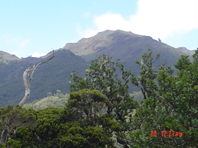 Philippine Parks and Protected Areas: Mt. Pulag National Park